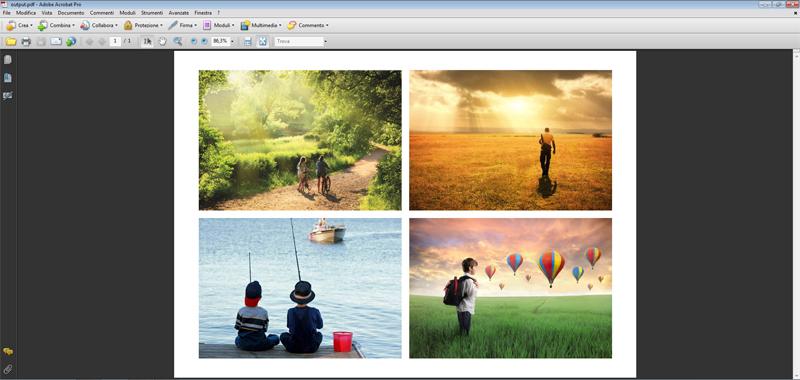 stampa in pdf di immagini
